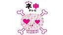AKB48神TV 第四季