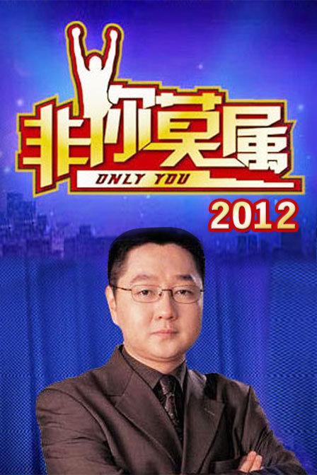 非你莫属 2012