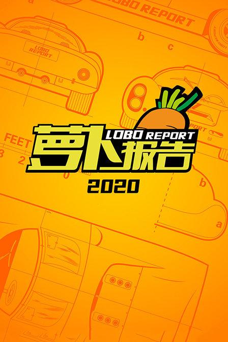 萝卜报告2020海报剧照