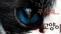 猫:看见死亡的双眼