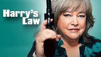哈莉与法律 第一季
