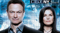 犯罪现场调查:纽约 第九季