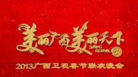 广西卫视春节联欢晚会 2013