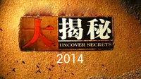 大揭秘 2014