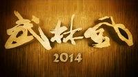 武林风 2014
