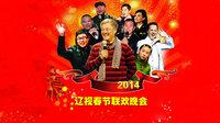 辽宁卫视春节联欢晚会 2014