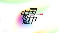 中国魅力 2014