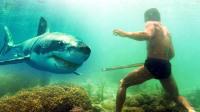 [侣行]少年派海底漫步猎鲨鱼