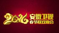 安徽卫视春节联欢晚会 2016