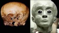 那些轰动一时的古代头骨