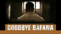 再见巴法纳