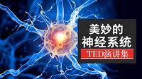 TED演讲集:美妙的神经系统