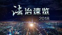 法治速览 2018