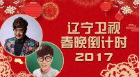 辽宁卫视春晚倒计时 2017