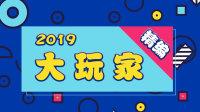 大玩家 精编 2019