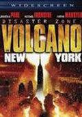 灾难地带:纽约火山
