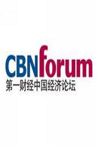 中国经济论坛 2011
