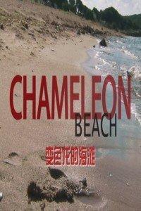 变色龙的海滩