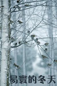 易寰的冬天