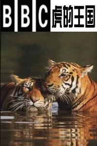 BBC之虎的王国