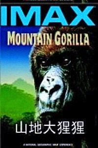山地大猩猩