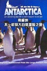 南极洲不一样的大自然探险之旅