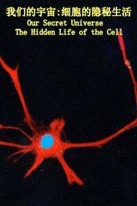 BBC之我们的宇宙:细胞的隐秘生活