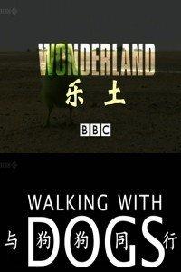 BBC之乐土:与狗狗共舞