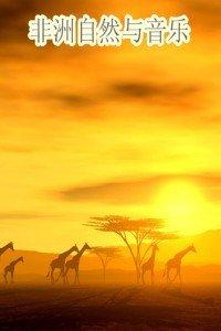 非洲自然与音乐