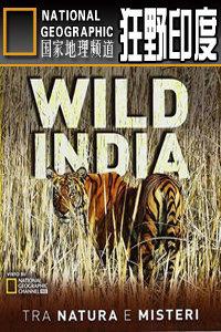 寰宇地理之狂野印度