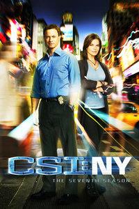 犯罪现场调查:纽约 第七季