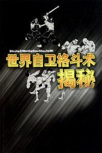 世界格斗术揭秘系列