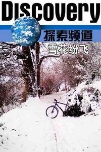 探索频道之雪花纷飞