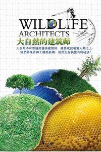 大自然的建筑师