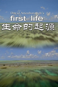 生命的起源