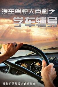 汽车驾驶大百科之学车辅导