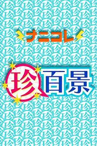 珍奇百景进香团 2010