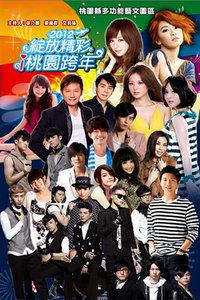 绽放精彩i桃园跨年 2012