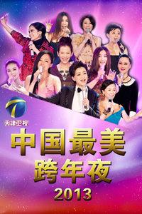 天津卫视中国最美跨年夜 2013