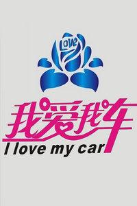 我爱我车 2013