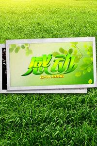感动 黑龙江卫视 2013