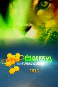 自然密码 2013