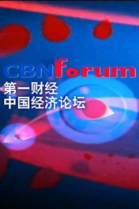 中国经济论坛 2013