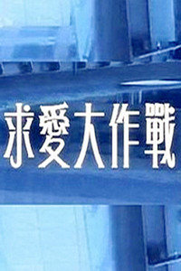 求爱大作战 2013
