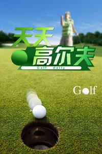 天天高尔夫 2013