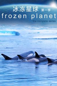 冰冻星球 第一季