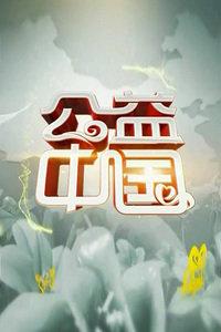 公益中国 2013