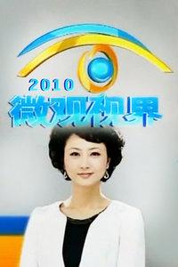 微观视界 2010