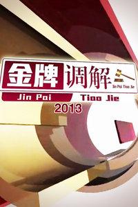 金牌调解 2013