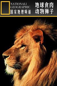 寰宇地理之地球食肉动物狮子